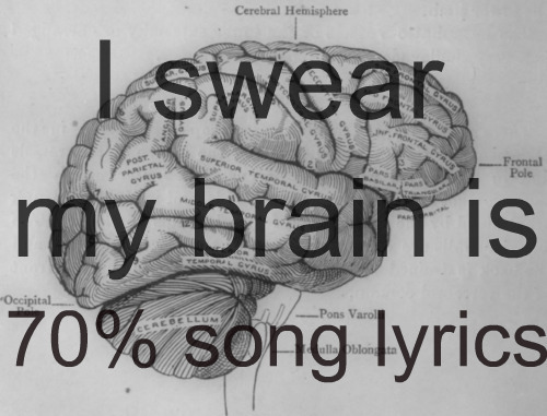 By song lyrics, I mean POP lyrics.