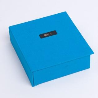 Blue 1 (2008)